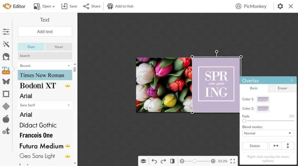 PicMonkey - Free photo editor for collage