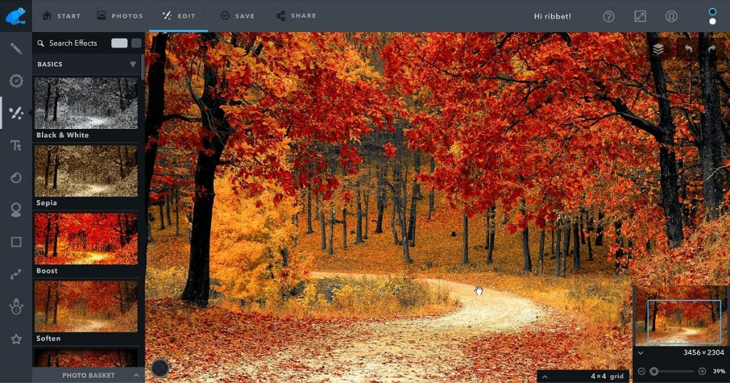 Ribbet - Best browser photo editor